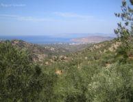 Λέσβος το παραδοσιακό στολίδι του Αιγαίου (Μυτιλήνη)