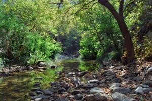 Водопад Халарис Каньон