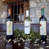 limnos-wines-1