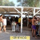 beach-bar-ammos-komi-chios-5